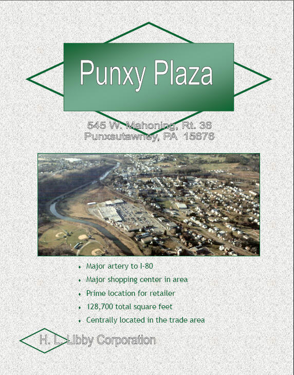 Click here to view Punxy Plaza Brochure